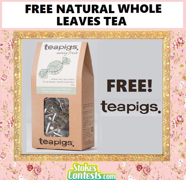 FREE Teapigs Feel Good Teas